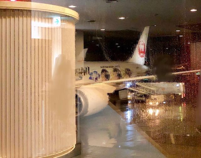 JAL嵐ジェット