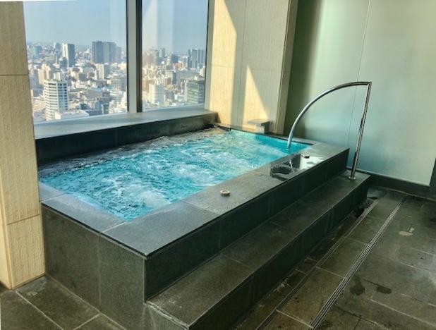 プリンスギャラリー紀尾井町のプール